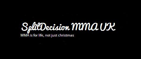 Ringside World - Split Decision banner